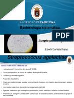 Steptococcus agalactiae