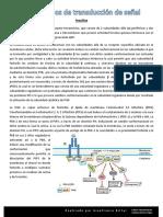 Cascadas Redacciones.pdf