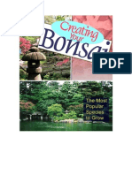 Creating Your Bonsai the Most Popular Species to Grow