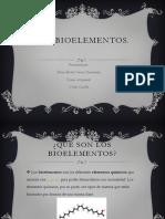 LOS-Bioelementos (1)