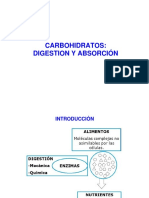 05_Digestion_de_carbohidratos[1]