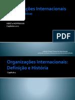 slides-herz-e-hoffmann-organizac3a7c3b5es-internacionais