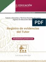 Registro de evidencias del tutor.pdf