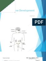 2. Endocrine Development (dr.Lantif) 12-10-15