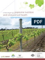 Grapevine Nutrition Amended