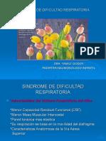 SINDROME DE DIFICULTAD RESPIRATORIA.ppt