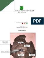1. Anatomi GIT 2014 - Square.pdf