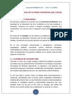 Guía de Sistemas de Filtrado Eficientes Que Preservan La Personalidad Vino - Rev.2