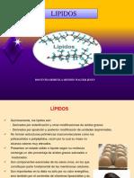 Lipidos Diapositivas 2