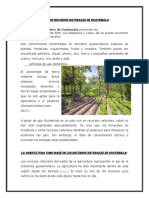 Los Recursos Naturales De Guatemala
