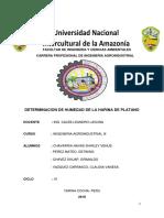 HARINA de platano-1.docx