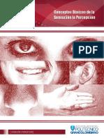 Sensación y percepción 1-8