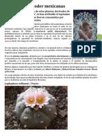 10 plantas de poder mexicanas