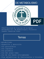 CLASE DE METABOLISMO.ppt