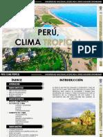 clima tropical.pptx