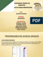 acidos grasos 1