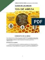 BIOLOGIA DELAS ABEJAS-Manual (4)