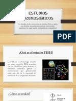 seminario de genetica.pptx