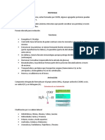 Proteinas.docx