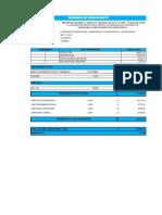 6.1 Presupuesto Resumen