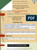 CULTURA-ORGANIZACIONAL (1)