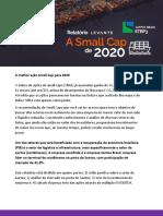 Relatorio_Small_Cap_2020