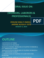 SECTORAL ISSUE ON WORKER, LABORER, AND PROFESSIONAL.ppt