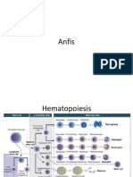 Anfis, Faktor Resiko, Gejala Multiple Myeloma