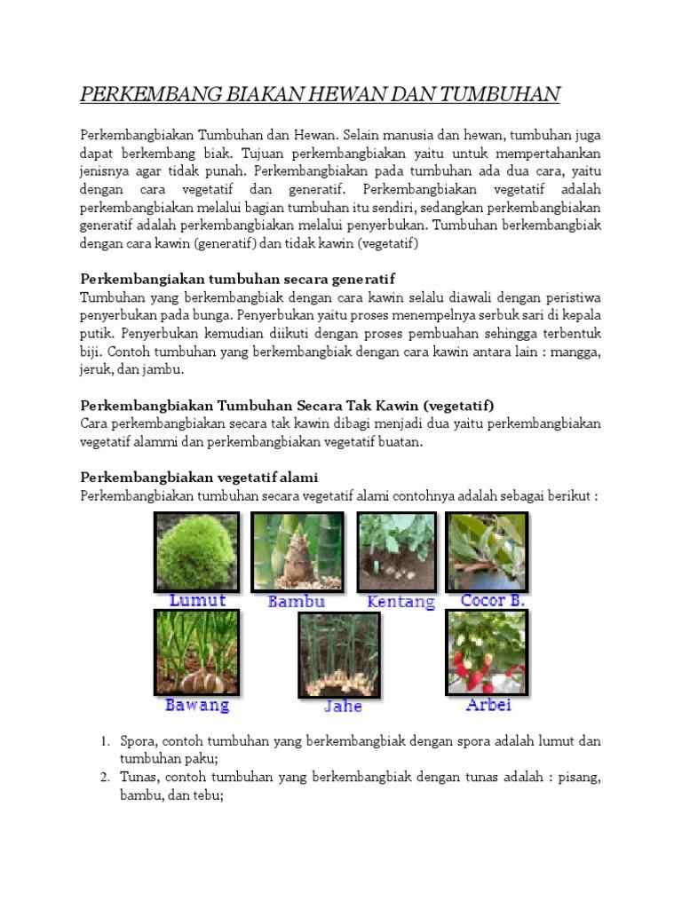 Perkembang Biakan Hewan Dan Tumbuhan 2