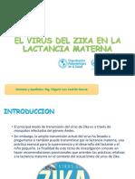 Virus Zika en Lactancia Expo