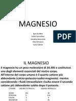 IL MAGNESIO.pptx