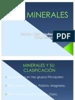Miner Ales