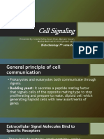 cell signalling