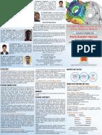 fem.brochure.pdf