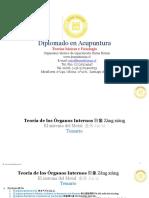 1.- Teoria de Órganos Internos_Sistema Del Metal_Pulmon