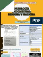 Patología Endometrial.