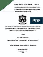 FRIJO.pdf