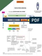 Esquema, proceso.pdf