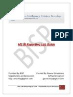 MS BI Reporting Guide