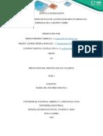 PazColombiagrupocolaborativo427 (4)