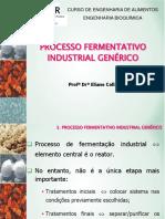2-processo fermentativo.pdf