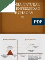 historianaturaldelaenfermedaddechagas-160427005638-convertido