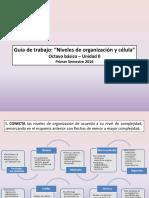 Guía de trabajo 8° año - Celula y niveles org. .ppt