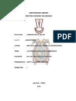 TRABAJO_ LAS DROGAS EN EL EMBARAZO.doc