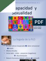 Discapacidad Enero 2018.pdf