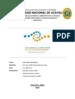 Constitucion de Sociedad Auditora (2)