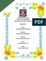 Proyecto - La Amazonia - OK