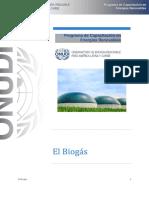 Contenido Extenso El Biogas