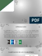 EXPO 02 GAS NATURAL.pptx