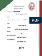 Informe 1 Curvas Equipotenciales F3